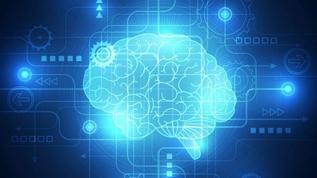 Четырнадцать сайтов, где можно потренировать мозги